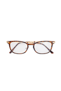 【予約商品】Zephyren(ゼファレン)SUNGLASS - INTELLIGENCE - BROWN / CLEAR